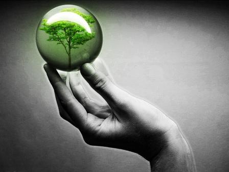 طبیعت, مرگ, زندگیست , نابودی انسان , نابودی طبیعت , جامعة سالم, طبیعت سالم ,طبیعت , بیمار , كیفیت, حامیان طبیعت , حامیان حقیقت اند , حفظ زندگی, تداوم , مسئول, زشتی , بیماری ,